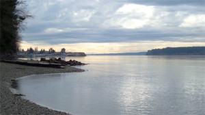 pugetsound_small