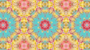 floralkaleidoscope_small
