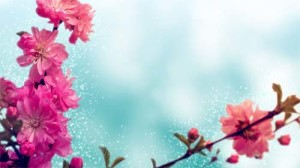 springbackground_small